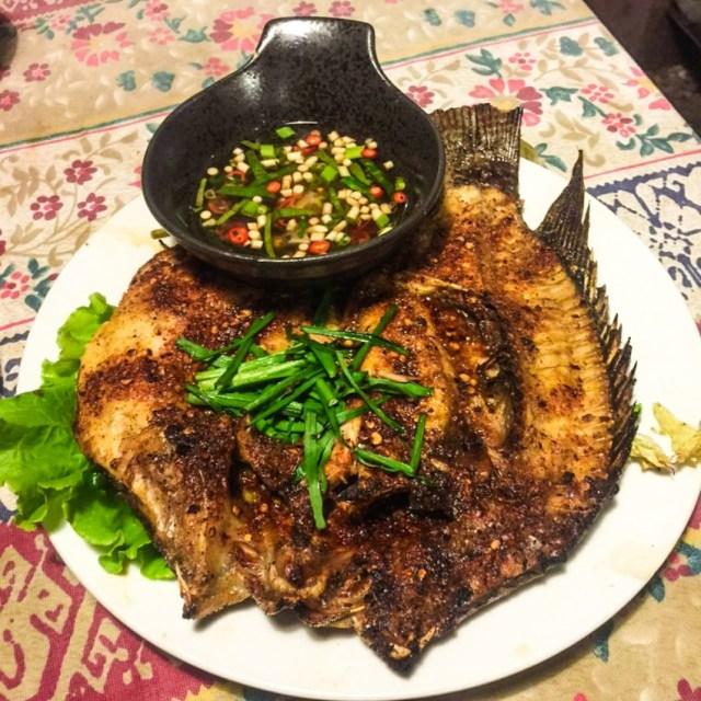 Yunnan fish