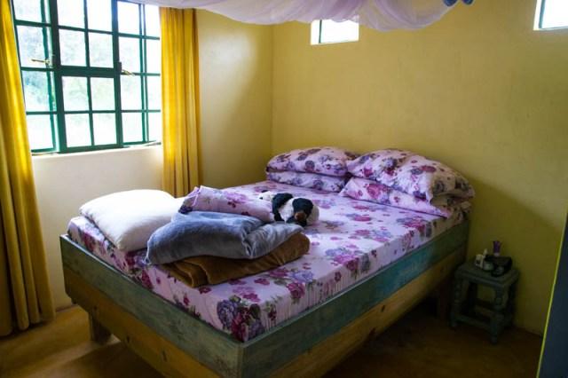 Aursha tanzania expat life