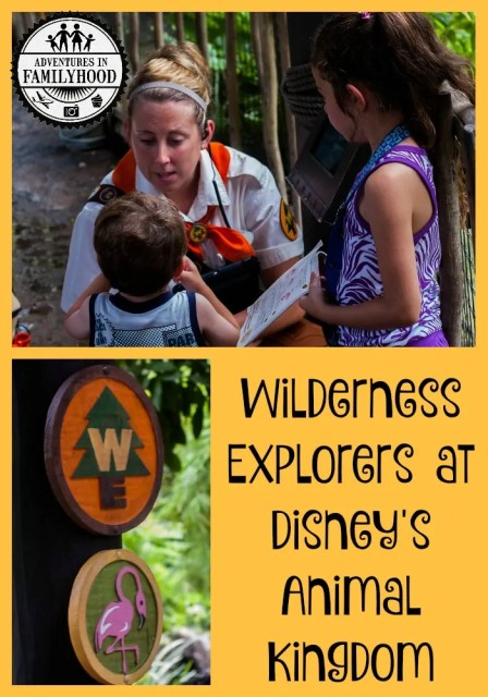 Wilderness Explorers Program at Disney's Animal Kingdom | Fun and Educational for Kids of all ages!