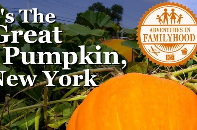 New York's Best Pumpkin Patches