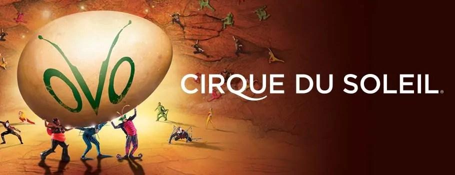 OVO from Cirque du Soleil