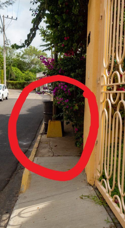 Sidewalk Light Pole and Trash Can