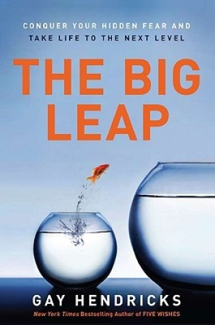 Review: The Big Leap: Conquer Your Hidden Fear and Take Life to the Next Level by Gay Hendricks