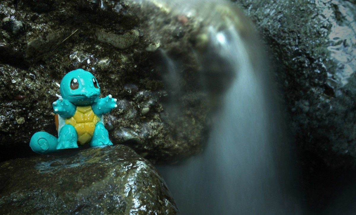 04 - Squirtle