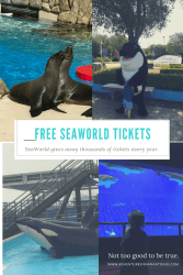 SeaWorld Season Pass Perks. Free Tickets at SeaWorld and other benefits of the Season pass.