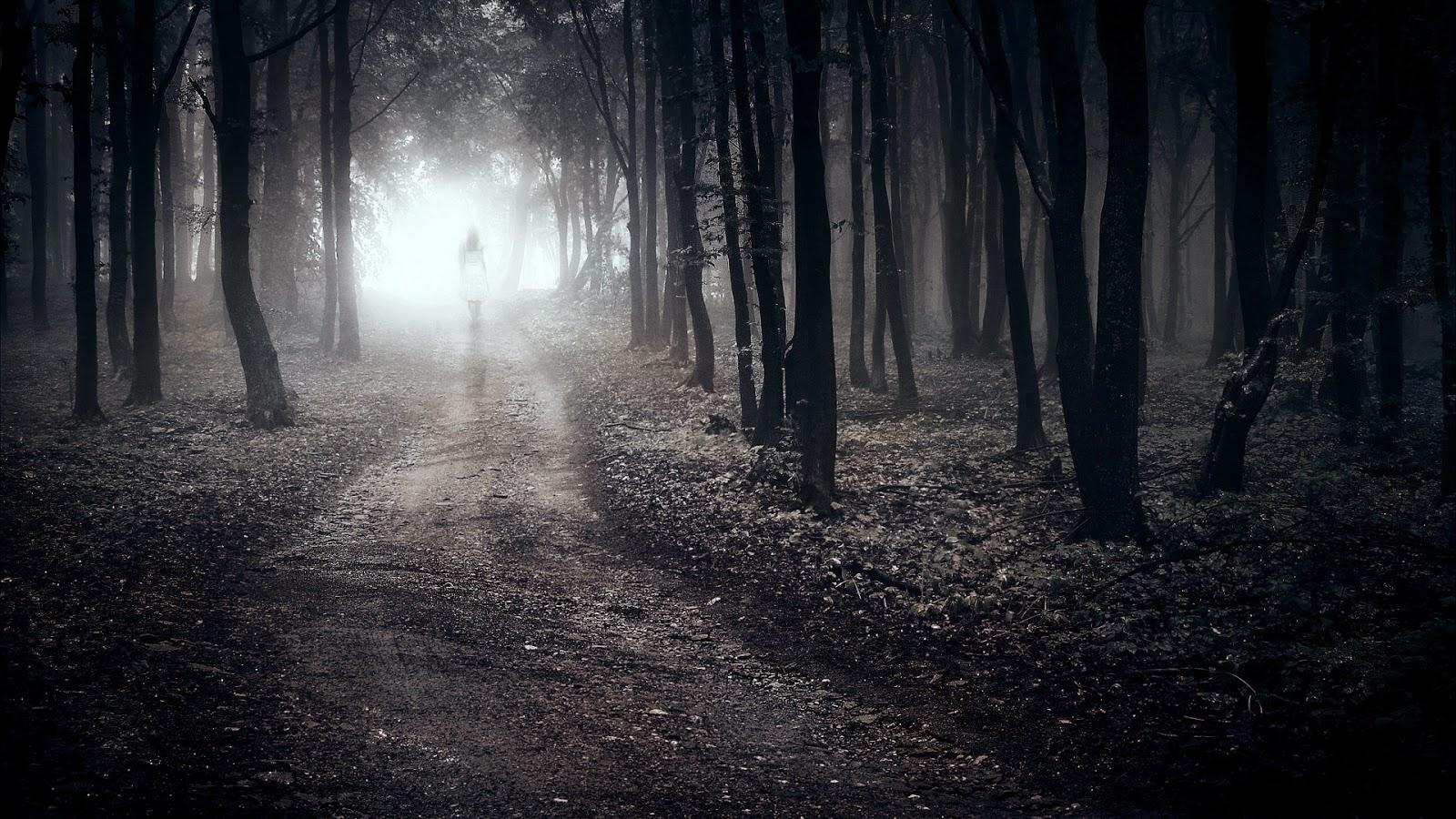 Fantastic Wallpaper Forest Girl - wallpaper-girl-walking-alone-in-forest-path-lonely-sad-1920x1080  Gallery_248540 .jpg?ssl\u003d1