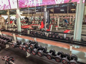 SC Sports Club Fitness Gym free weights