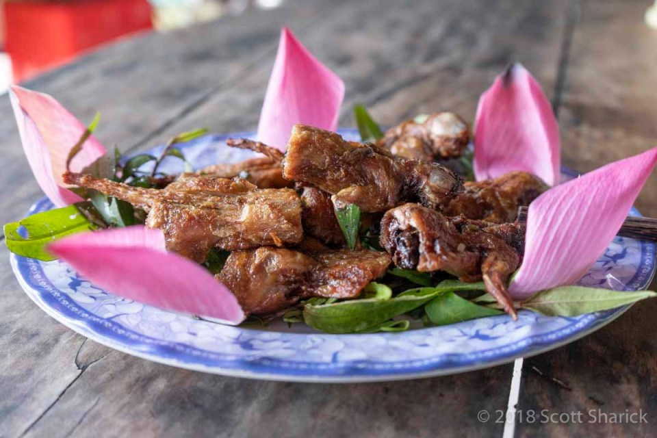A plate of deep fried rat on lotus petals.
