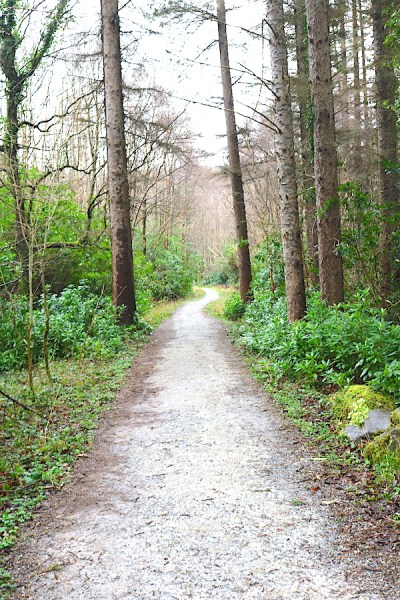 Explore on foot around the Ring of Kerry. There are multiple hiking paths along the Ring of Kerry in Ireland. One of the best places to visit on your Ireland road!