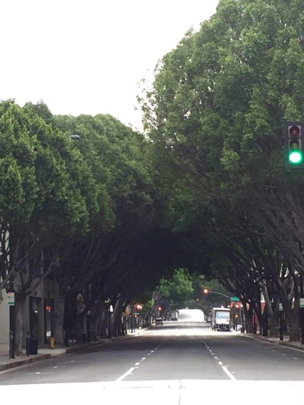 Hiking in Pasadena - Green Street