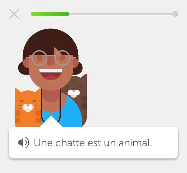Want to Learn French From Dualingo ? – If can I do it, anyone can!