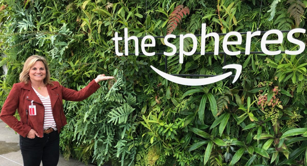 A Visit to The Amazon Spheres :: A Rainforest With Coffee & Doughnuts!
