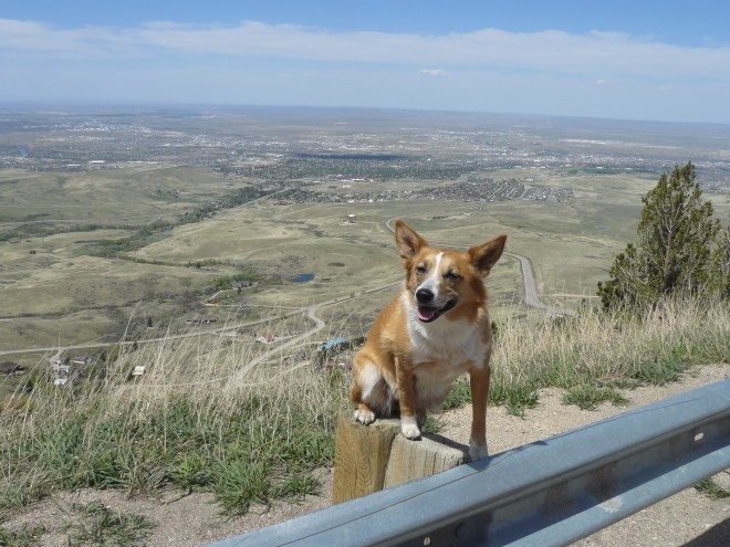 The view of Casper looking N from the lookout pullout along Casper Mountain Road.