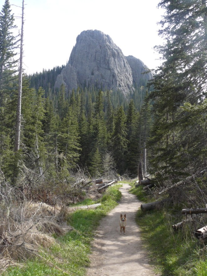 On her way back now to the G6. Lupe on Trail No. 9 not far from the junction with the Lost Cabin Trail No. 2 horse spur.