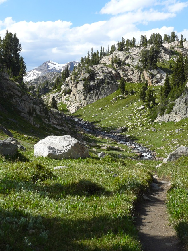 A look back at the trail to Fossil Lake (and Lupe's access trail to Fizzle Lake) in the Beartooth Mountains.