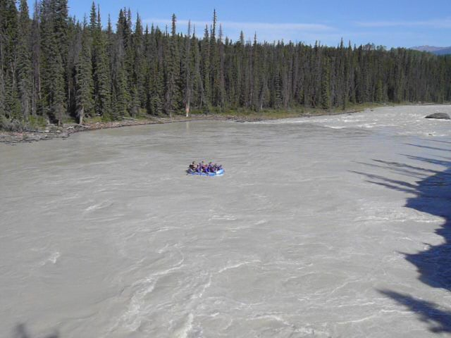 Rafters set out below Athabasca Falls. The river has been this gray, silt laden color every time Lupe has seen it.
