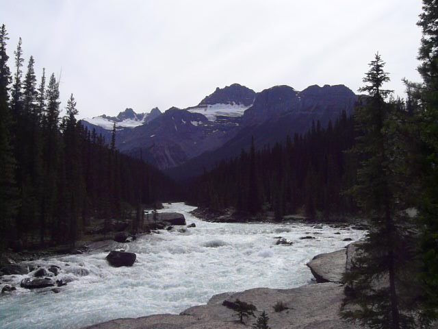 Mistaya River