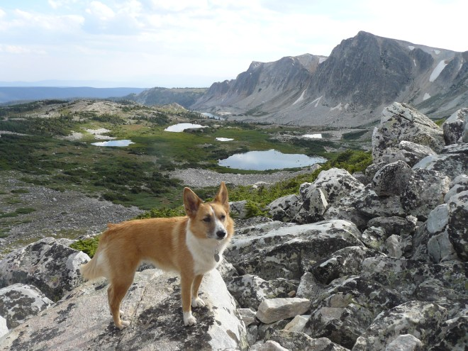 Looking S as Lupe climbs Medicine Bow Peak. Lookout Lake is now the farthest one in the distance.