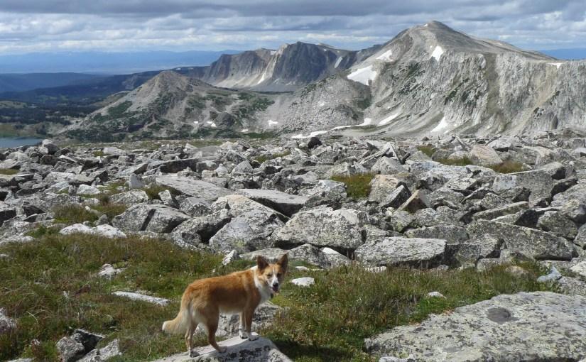 Browns Peak, Wyoming (8-12-15)