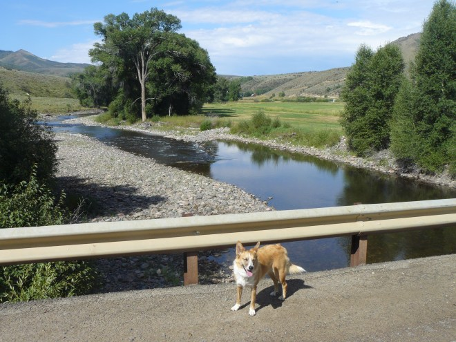 Lupe at the Little Snake River.