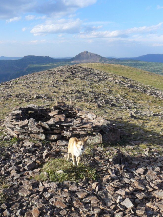 There was a small circular two foot wall made of loose rocks close to the summit cairn.