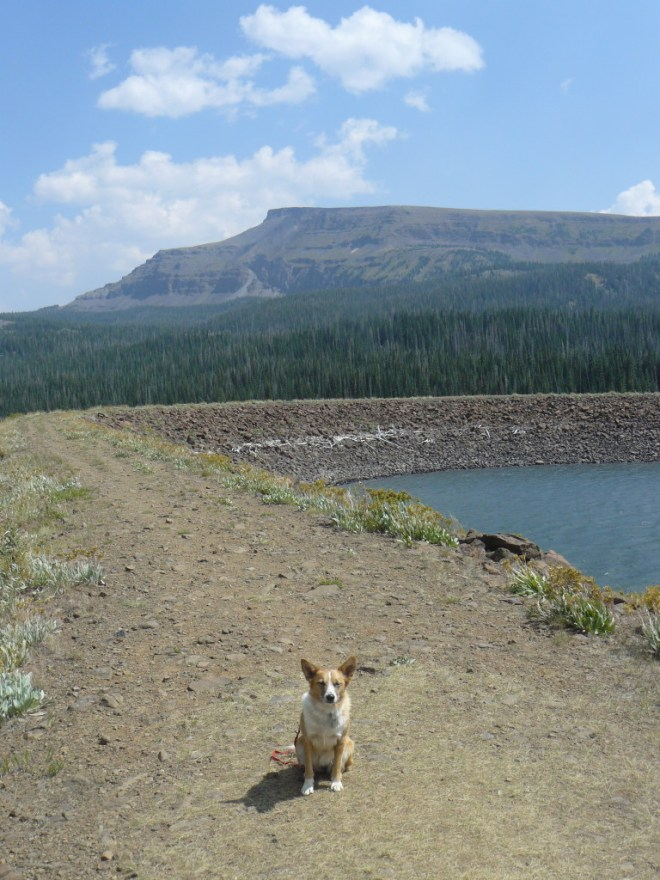 Lupe on the Stillwater Reservoir dam. Her peakbagging destination is Flat Top Mountain, seen here to the SE.