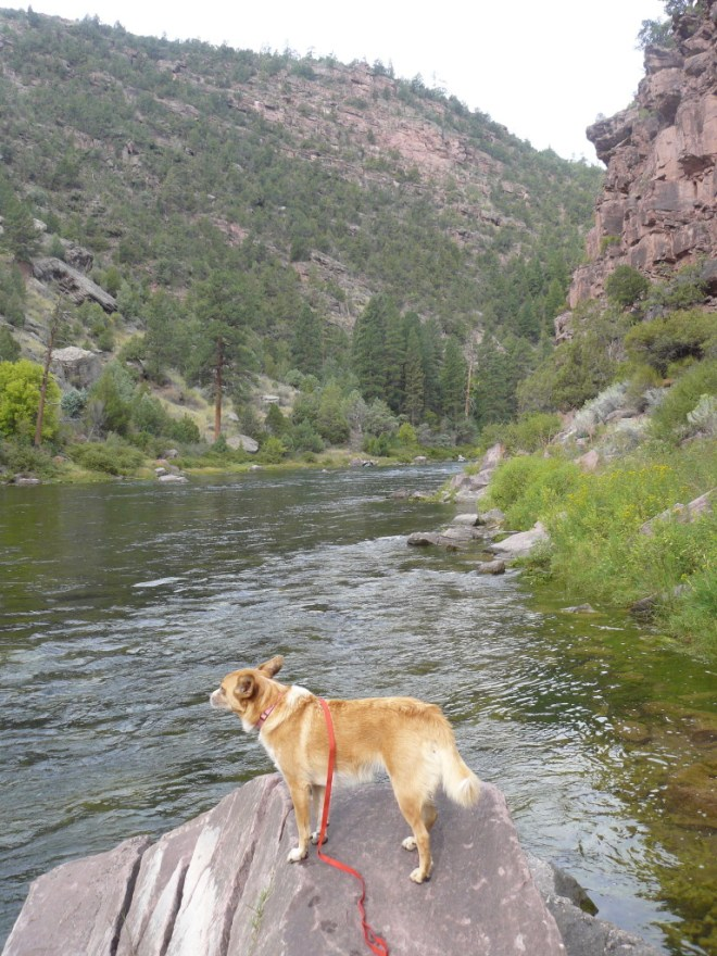 Lupe reaches the Green River.