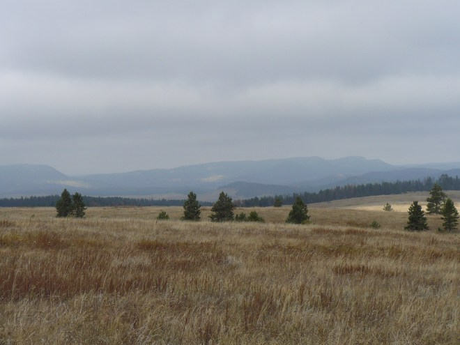 Looking NW towards the ridges of the Limestone Plateau country.
