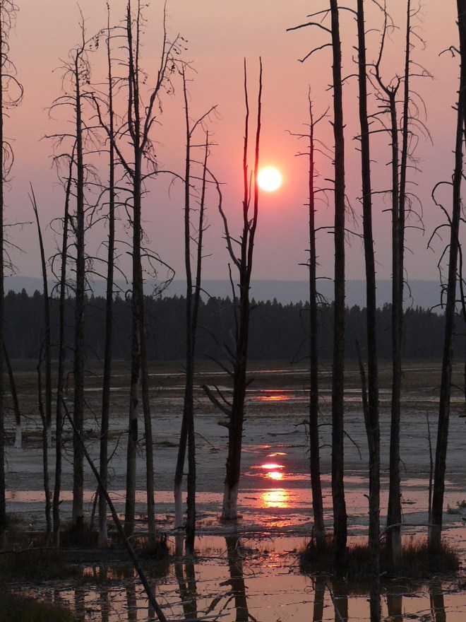 Sunset at Lower Geyser Basin, Yellowstone NP, WY 8-12-12