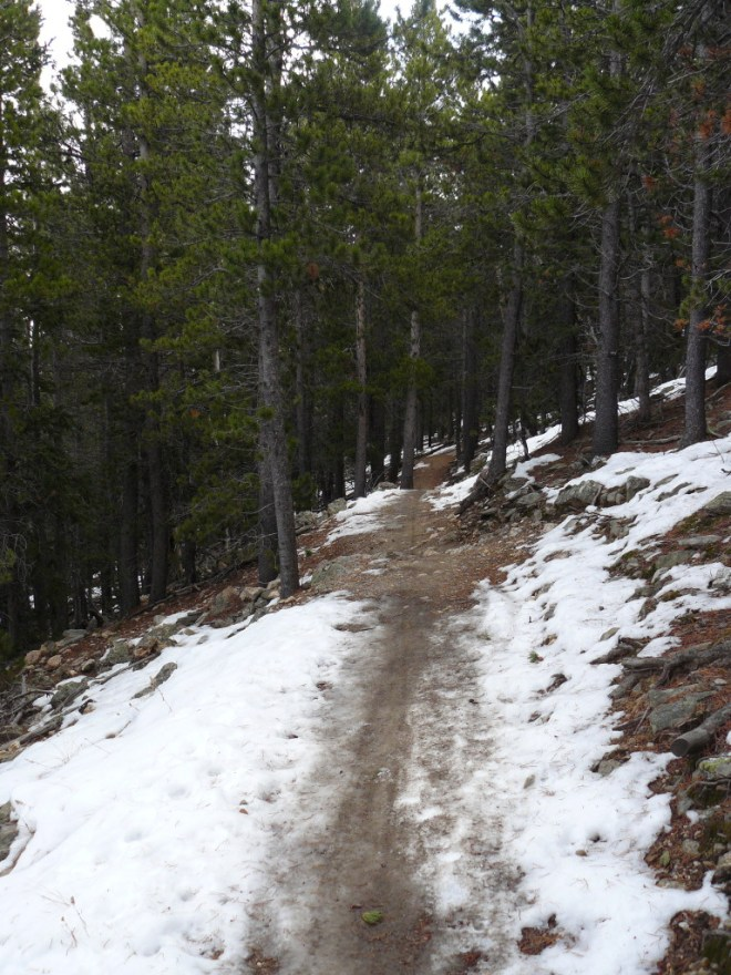 The Bergen Peak trail high up on the N side of the mountain featured a bit of snow.