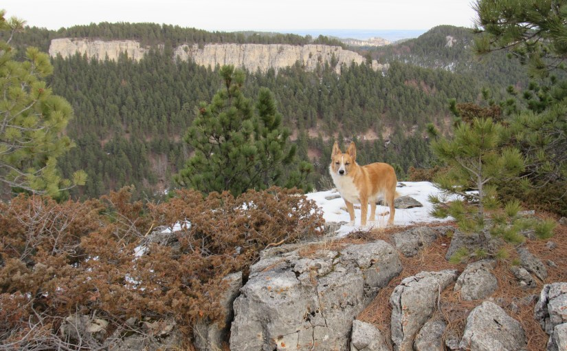 Black Hills, SD Expedition No. 153 – Steamboat Rock, Pugg's Keep & Green Top (1-23-16)