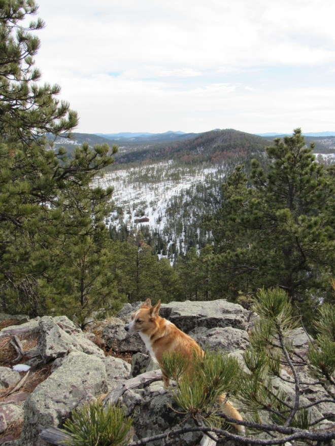 Lupe at the SE end of the E ridge. Photo looks SE across the South Boxelder Creek canyon.