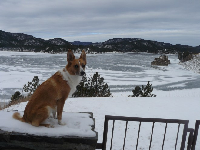 Lupe arrives at Pactola Reservoir to start out New Year 2015 right with one of her Black Hills, SD Expeditions. Pactola Reservoir is the largest lake in the Black Hills.