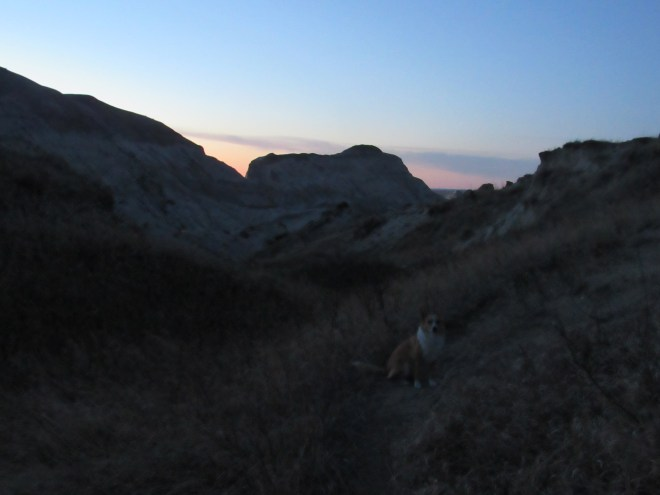 Lupe on the trail down White Butte at twilight.
