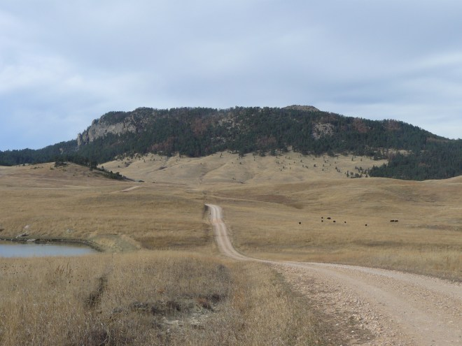 The road to the headquarters of Douglas and Sheila Hunter's ranch E of the mountain.