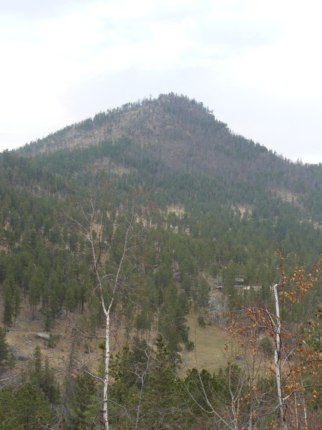 Looking NE back at St. Elmo Peak from USFS Road No. 302.1H at the N end of the ridge that Peak 6733 is part of 2 miles farther S.