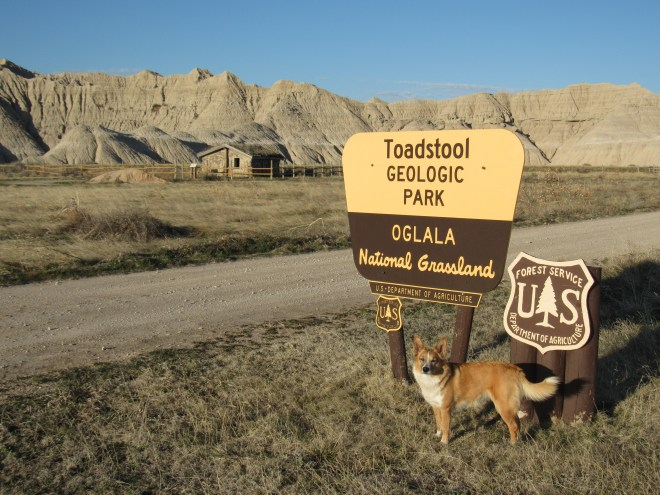 Lupe at the entrance to Toadstool Geological Park in western Nebraska's badlands. A sod home is seen on the L.