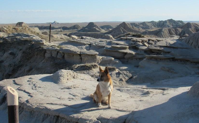 Toadstool Geologic Park, Nebraska (4-4-16)