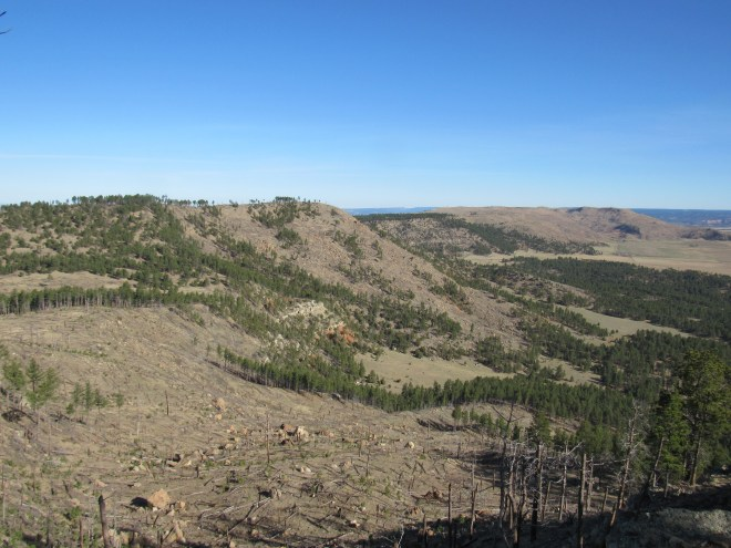 The un-named ridge (L) and part of Elk Mountain (R) from Wildcat Peak. Photo looks NNW.