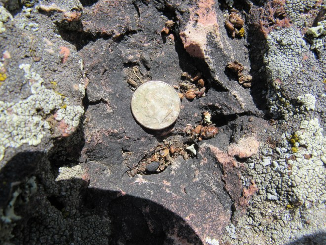 The 1999 dime in a depression on top of the money rock at the summit of Fanny Peak.