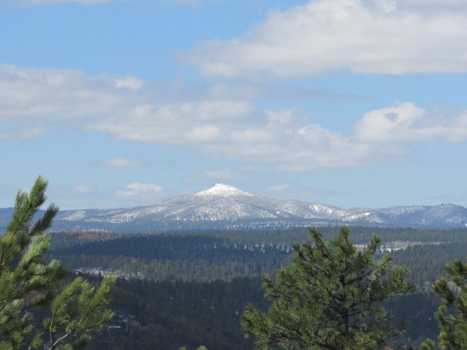 The best view Lupe could find from Kirk Hill was this look at Custer Peak (6,804 ft.). Photo looks SW. Taken with the telephoto lens.