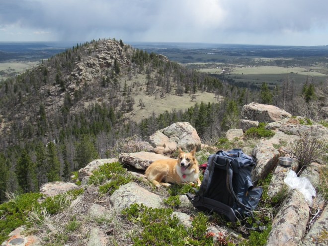 Lupe relaxes up on Leg Benchmark during her final ascent of the mountain.