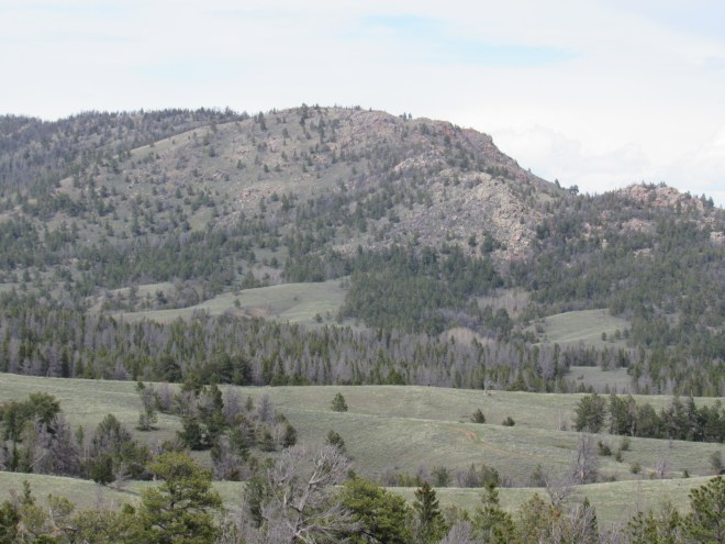 Point Crawford (Center) as seen from USFS Road No. 705 a mile E of I-80. Photo looks NNE.