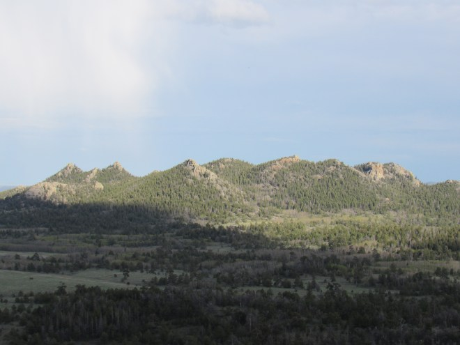 The view to the SE toward Twin Mountain (8,831 ft.) and the Sherman Benchmark while heading S down Point Crawford. Lupe planned to explore this area the next day, but weather prevented her from doing so. Photo looks SE.