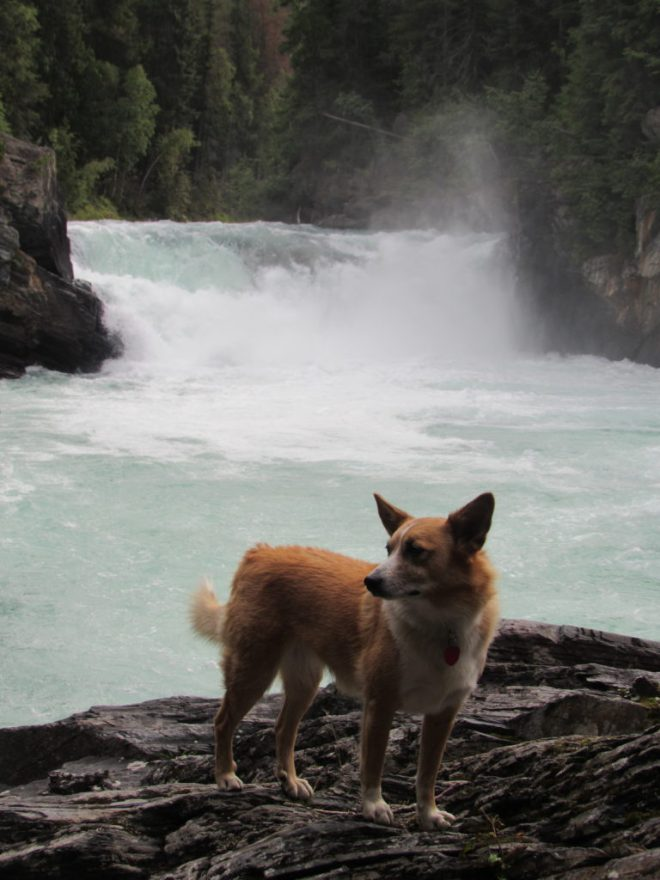 Lupe at Overlander Falls, Mount Robson PP, Canada 8-4-16