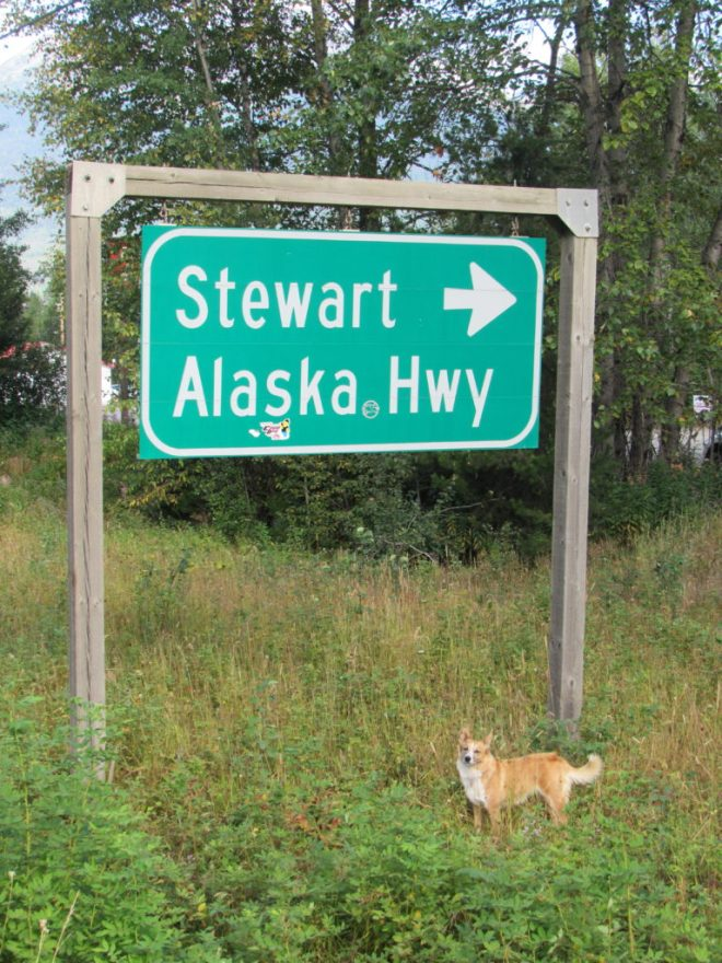 Lupe at a sign near the junction of Yellowhead Highway No. 16, which she had been following ever since leaving Jasper in Alberta, and the Cassiar Highway No. 37.