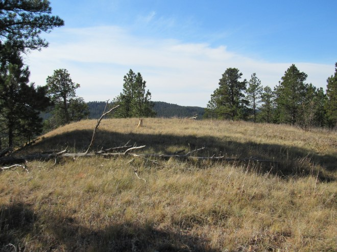 The Black Hills (West) summit. Photo looks SW.
