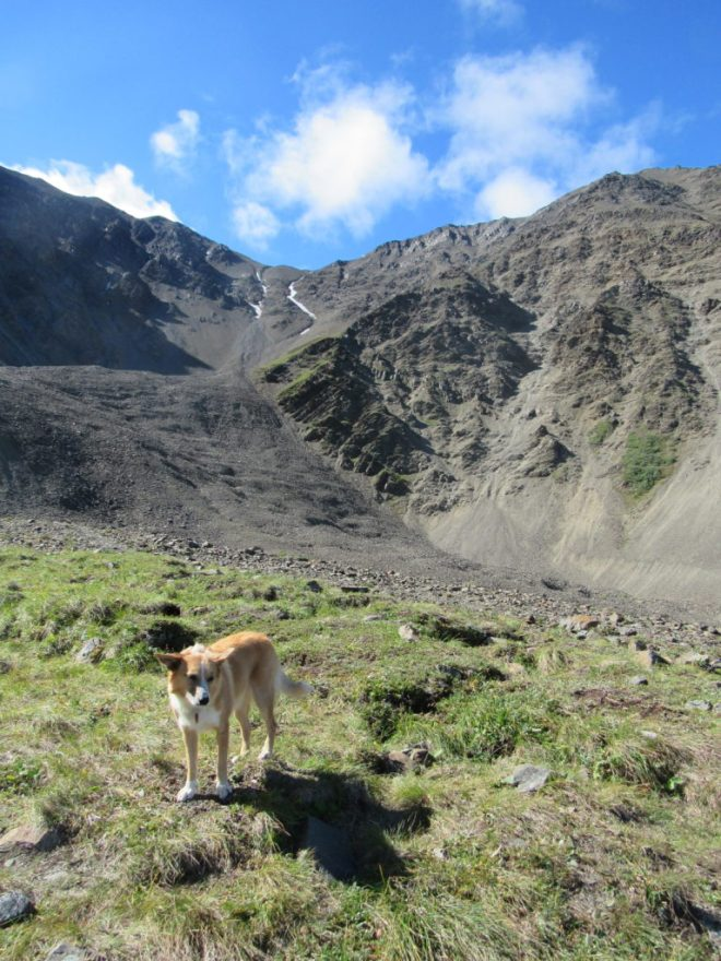 Lupe reaches the giant cirque, which is the imaginary seat of King's Throne. It was annoyingly windy. Photo looks SW.