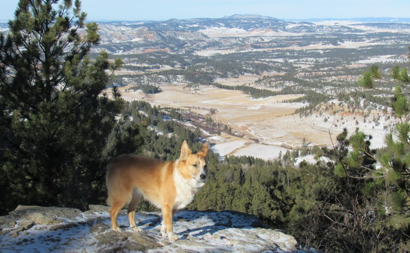 Black Hills, WY Expedition No. 185 – Sweetwater Mountain (12-4-16)