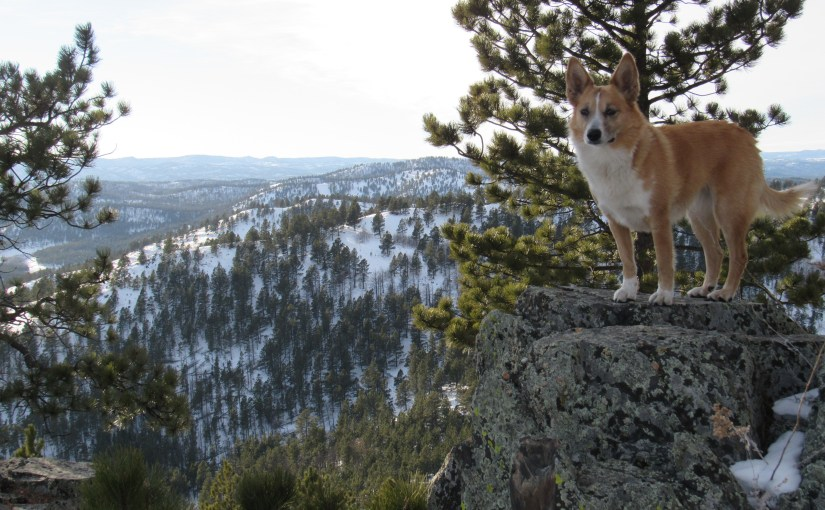Black Hills, SD Expedition No. 187 – New Year's Eve Peak (12-30-16)